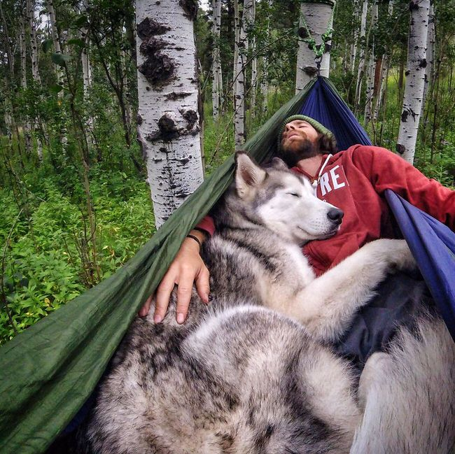 Man and his dog napping together