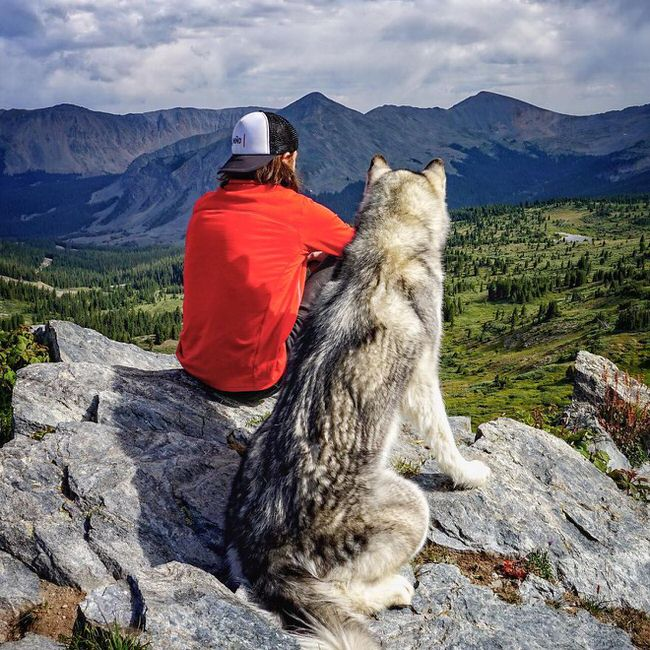 Man enjoying the view with his dog